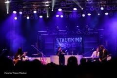 staubkind_20