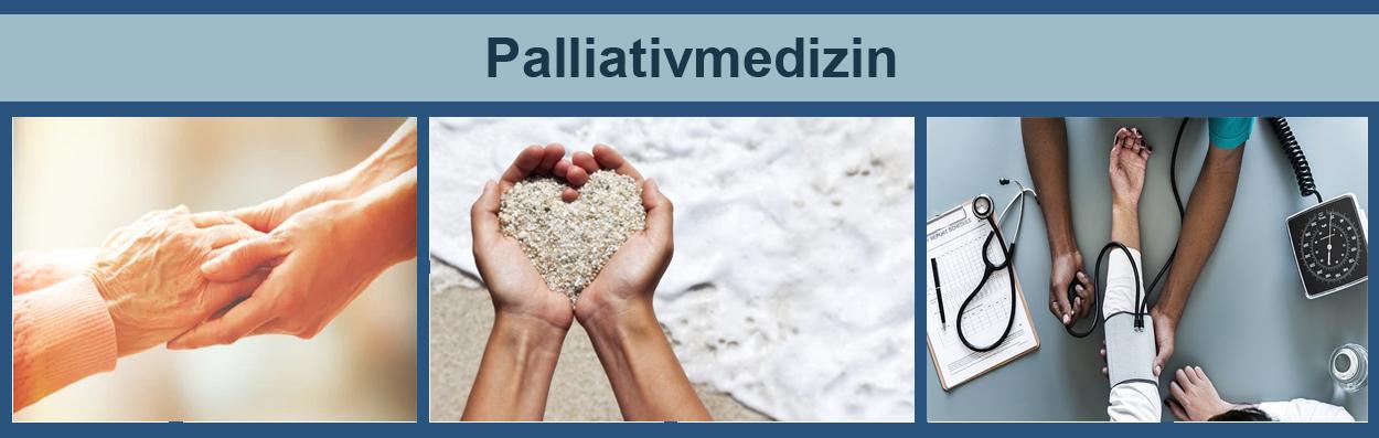 Was Heißt Palliativ